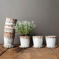Plant Pots and Pleated Saucers Bundle