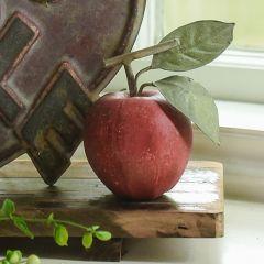 Decorative Orchard Apple Set of 2