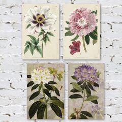 Botanical Floral Canvas Wall Art