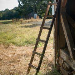 Barnwood Display Ladder