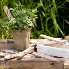 Herb Garden Stakes With Box
