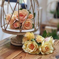 Lovely Light Rose Bundle Set of 2