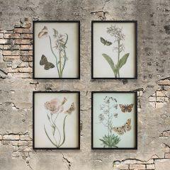 Flowers and Butterflies Framed Wall Art Set of 4