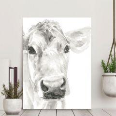 Close Up Cow Canvas