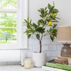 Potted Faux Lemon Tree