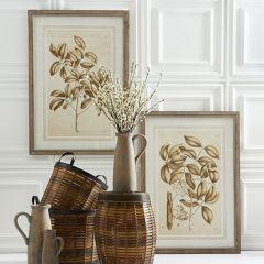 Framed Fig Print Wall Decor