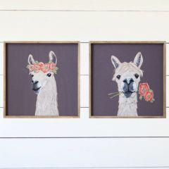 Framed Llama Print Set of 2