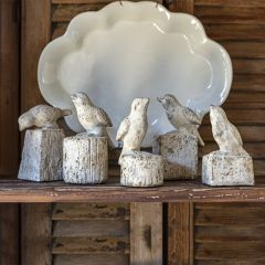 Perched Bird Tabletop Decor Collection Set of 5