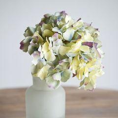 Delicate Pastel-Hued Hydrangea Stem Set of 6