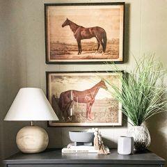 Horse In Pasture Framed Print Set of 2