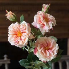 Garden Rose Bundle Peach