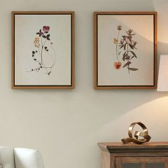 French Herbarium Framed Linen Canvas Set of 2