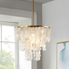 Shell Style Chandelier
