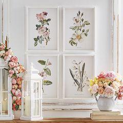Fir Wood Framed Botanical Art Set of 4