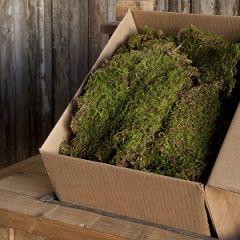 Sheet Moss Box 1.75 Cubic Feet