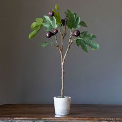 Mission Fig Faux Topiary