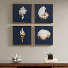 Modern Shell Wall Art Set of 4