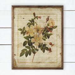 Botanical Print One Wall Art