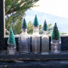 Bottle Brush Tree In Glass Bottle Vase, Set of 5