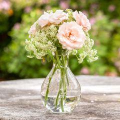 Elegant Etched Glass Vase