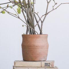 Terracotta Clay Pot