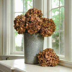 Beautiful Two-Toned Fall Hydrangea Set of 3
