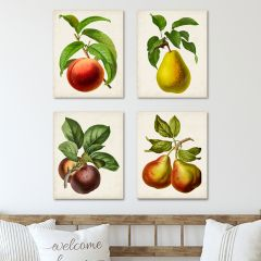 Farm Fruit Wall Art