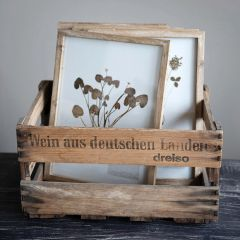 Framed French Country Botanical Wall Decor Set of 6