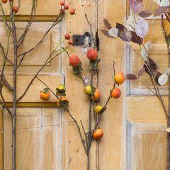 Decorative Persimmon Branch