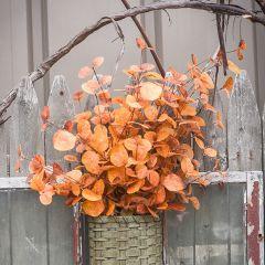 Deep Orange Fall Eucalyptus Spray Bundle