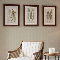 Fern Single Mat Framed Print Set of 3