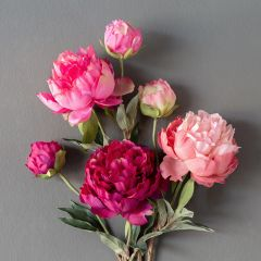 Faux Summer Peony Set of 3