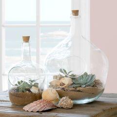 Glass Terrarium Bottle