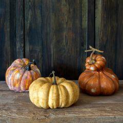 Decorative Autumn Gourds Set of 3