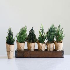 Faux Tree In Paper Wrapped Pot Set of 6