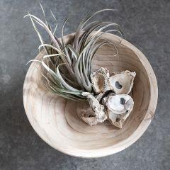 Footed Wood Display Bowl