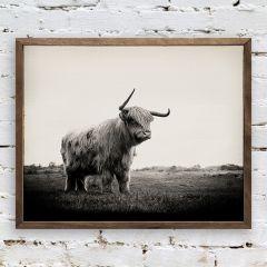 Framed Bull Wall Art