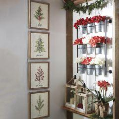 Framed Holiday Botanical Art, Set of 4
