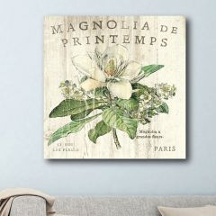 French Country Magnolia Canvas Wall Art