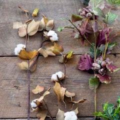 25 Inch Harvest Season Cotton Stem Bundle