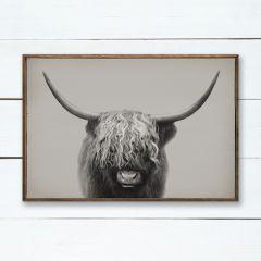 Highland Bull Framed Wall Art