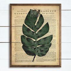 Palm Gazette Framed Print