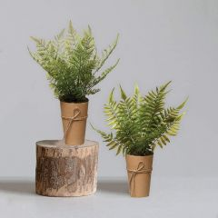 Paper Potted Faux Fern Plants Set of 2