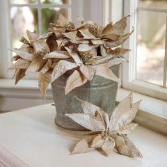 Pretty Pale Poinsettia Stem