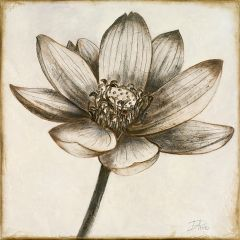 Square Sepia Floral Wall Art