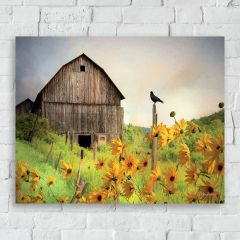 Sunflowers And Barn Landscape Canvas Wall Art