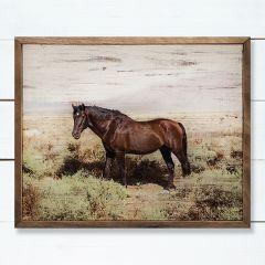 Wild Horse Wall Art